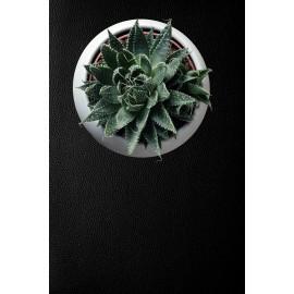 X4 BLACK LEATHER SELF ADHESIVE STICKER, VINYL WINDOW WALL DOOR FURNITURE COVERING