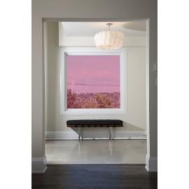 Raspberry 30 Transparent Colourful Window Film Optically Clear Tint