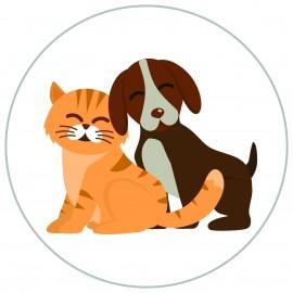 Pet Store / Vets